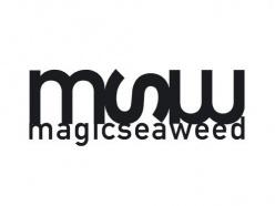 Magicseaweed