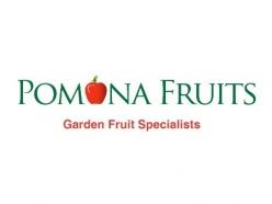 Pomona Fruits